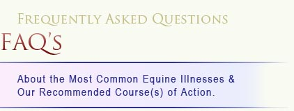 FAQ's about the most common equine illnesses & our recommended course(s) of action.
